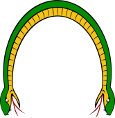 Serpent Enarched Head at Both Ends