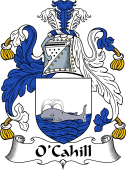 Irish Coat of Arms for O'Cahill