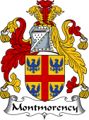 Irish Coat of Arms for Montmorency