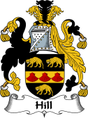 Irish Coat of Arms for Hill