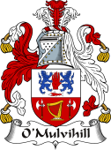 Irish Coat of Arms for O'Mulvihill