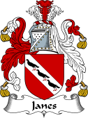 Irish Coat of Arms for Janes or Janns