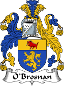 Irish Coat of Arms for O'Brosnan
