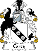 Irish Coat of Arms for Carey