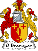 Irish Coat of Arms for O'Branagan or Branigan