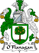 Irish Coat of Arms for O'Flanagan