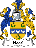 English Coat of Arms for Hasel