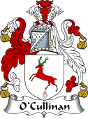 Irish Coat of Arms for O'Cullinan