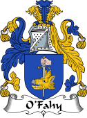 Irish Coat of Arms for O'Fahy