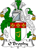 Irish Coat of Arms for O'Brophy
