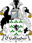 Irish Coat of Arms for O'Gallagher or Goligher