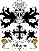 Welsh Coat of Arms for Atkyns (of Cardigan)