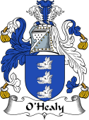 Irish Coat of Arms for O'Healy or Hely