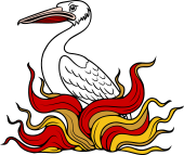 Pelican Issuing Out of Flames