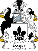 English Coat of Arms for Gayer