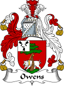 Irish Coat of Arms for Owens