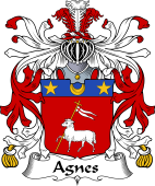 Italian Coat of Arms for Agnes