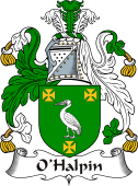 Irish Coat of Arms for O'Halpin II