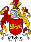 Irish Coat of Arms for O'Falvey