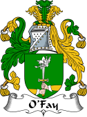 Irish Coat of Arms for O'Fay or O'Fee
