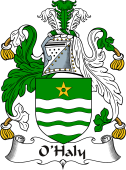 Irish Coat of Arms for O'Haly or Healy
