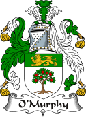 Irish Coat of Arms for O'Murphy or Morchoe