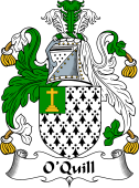 Irish Coat of Arms for O'Quill