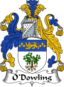 Irish Coat of Arms for O'Dowling