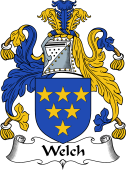 English Coat of Arms for Welch or Welsh