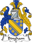 Irish Coat of Arms for Bingham