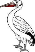 Pelican Close or Statant
