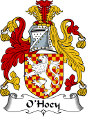 Irish Coat of Arms for O'Hoey