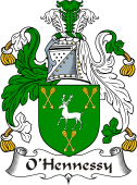 Irish Coat of Arms for O'Hennessy