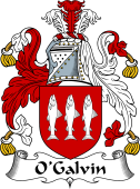 Irish Coat of Arms for O'Galvin