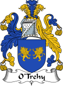 Irish Coat of Arms for O'Trehy or Troy