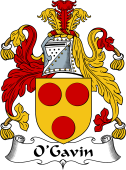 Irish Coat of Arms for O'Garvin or Gavan