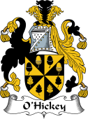 Irish Coat of Arms for O'Hickey II
