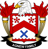 American Coat of Arms for Agnew