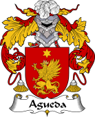Portuguese Coat of Arms for Agueda