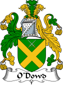 Irish Coat of Arms for O'Dowd