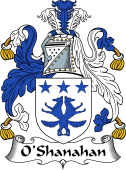 Irish Coat of Arms for O'Shanahan or Shannon