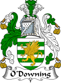 Irish Coat of Arms for O'Downing