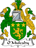 Irish Coat of Arms for O'Mulcahy or Caughey
