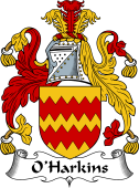 Irish Coat of Arms for O'Harkins or Harkan