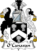 Irish Coat of Arms for O'Canavan