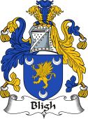 Irish Coat of Arms for Bligh