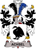 Danish Coat of Arms for Achsel or Axel