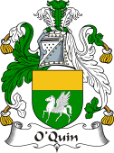 Irish Coat of Arms for O'Quin or Cuinn