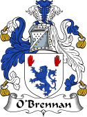Irish Coat of Arms for O'Brennan