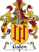 German Wappen Coat of Arms for Galen